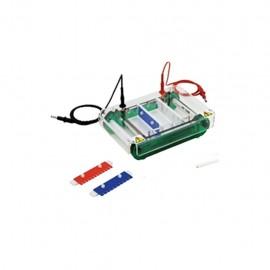 Cámara de electroforesis horizontal. Modelo CS-SPCT - Envío Gratuito