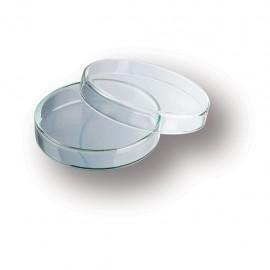 Caja Petri de vidrio DURAN - Envío Gratuito