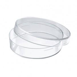 Caja Petri de vidrio - Envío Gratuito